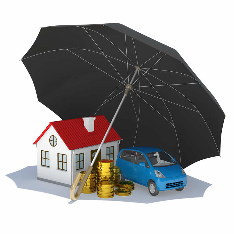 Miniature house, gold coins, car protected with black umbrella
